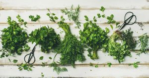 bunches of herbs on white wooden surface