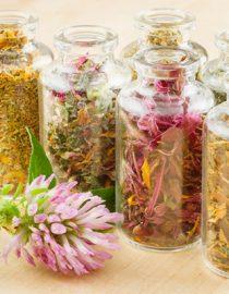 A Herbalist's Formula