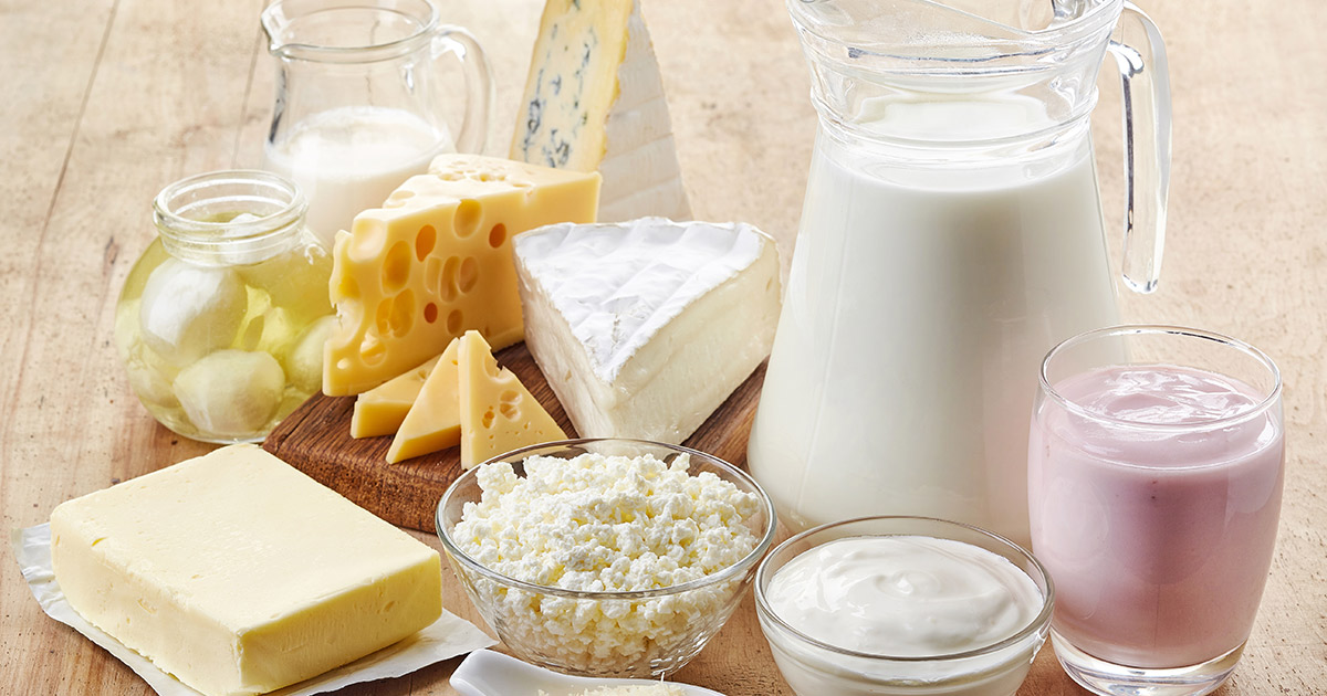variety of dairy products including cheeses and milk